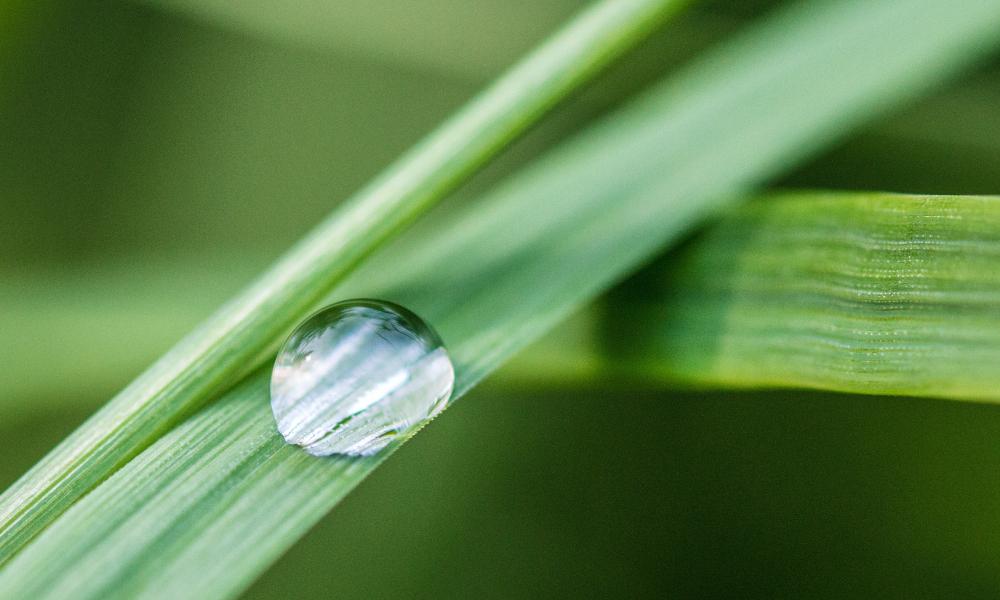 Analizamos el Agua Micelar de Isdin