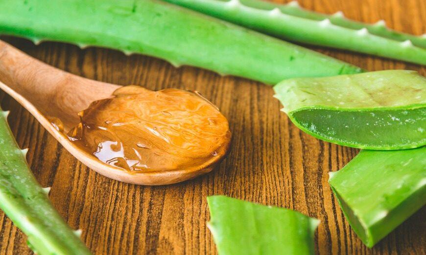 Todas las propiedades del aloe vera para la piel